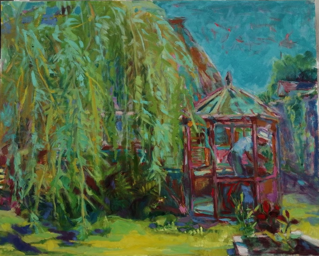 Willow in Dorset garden